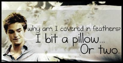 i bit a pillow or two.. Pictures, Images and Photos
